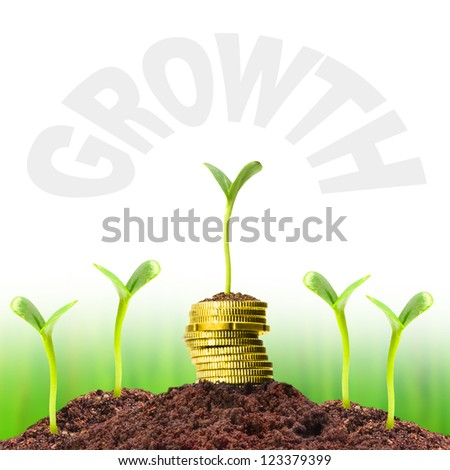 Money growth. Investment concept. Picture with easy removable text - space for your text or image. - stock photo