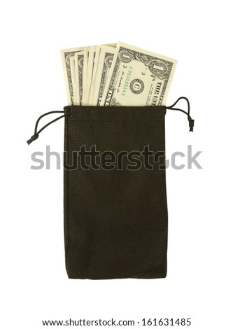 Money in Bag - stock photo