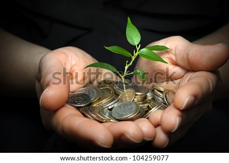 money in hands investment concept