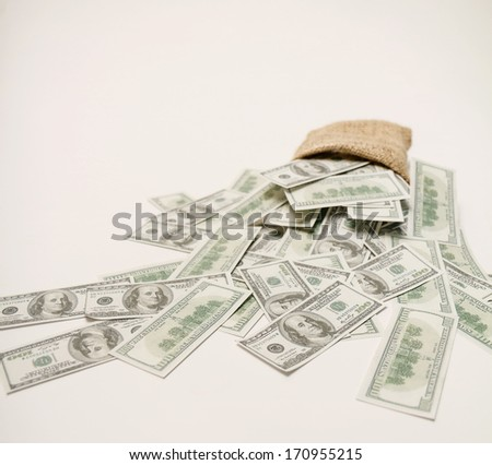 Money in the bag on a white background