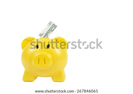 Money in yellow piggy-bank, business concept - stock photo