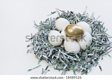 Money Nest with Golden Egg - stock photo