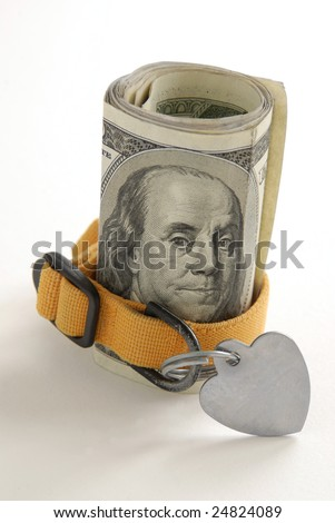 Money roll showing Benjamin Franklin's portrait with a yellow pet collar. - stock photo