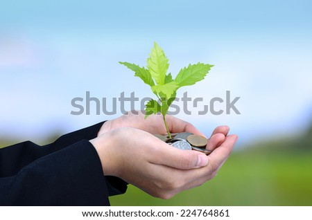 Money, Tree,Coins, Business growing concept, Success, Hand holding young tree growing on coins stack and Blue Sky - stock photo