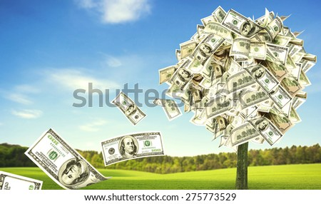 Money tree growing in the middle of green meadow - stock photo