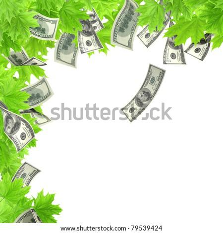 Money tree. Isolated over white - stock photo