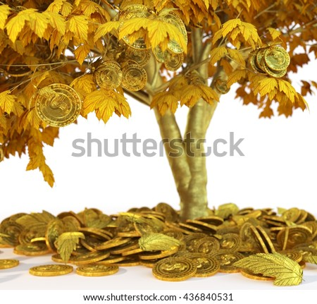 money tree with coin's on isolate white background close up 3d illustration