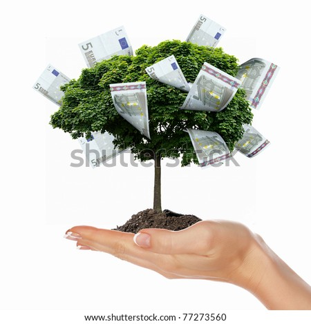 Money Tree with cuts on his hand of man. a symbol of financial success. - stock photo