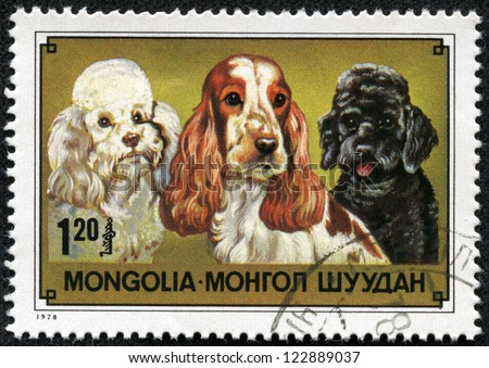 MONGOLIA - CIRCA 1978: A stamp printed in Mongolia showing Cocker Spaniel and Poodle, circa 1978