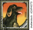 "MONGOLIA - CIRCA 1984: A Stamp printed in MONGOLIA shows image of a Mongolian Sheepdog from the series ""Dogs"", circa 1984 - stock photo"