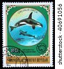 MONGOLIA- CIRCA 1980: A stamp printed in Mongolia shows Killer Whale - Orcinus orca, series Antarctic exploration, circa 1980 - stock photo