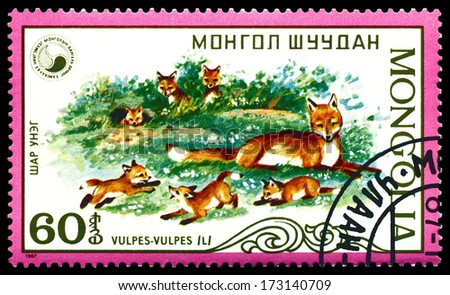 MONGOLIA - CIRCA 1987: A stamp printed in Mongolia shows Vulpes and puppy of the fox. (Red Fox), circa 1987 - stock photo