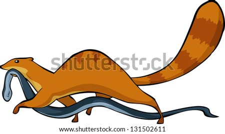 Mongoose with a snake in his mouth raster version - stock photo