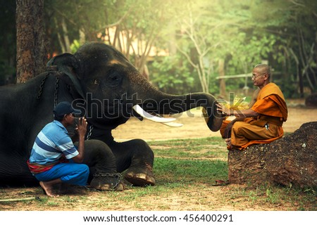 Monk and man with young elephant
