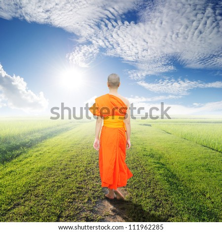 Monk Walk in way of  grass fields and blue sky - stock photo