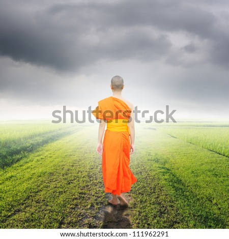 Monk Walk in way of  grass fields and rainclouds - stock photo