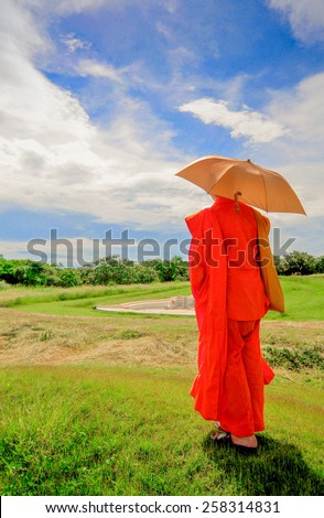 Monk walk to the Chinese tomb - stock photo