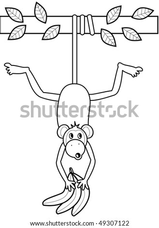 Monkey Hanging from a branch - stock photo