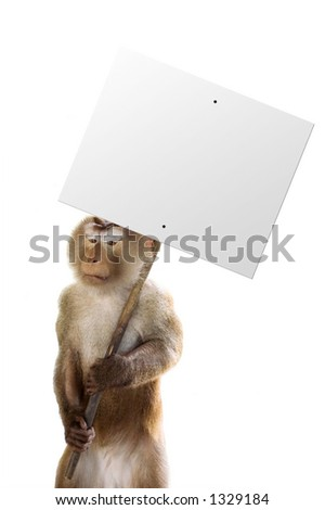 Monkey holding a sign with whatever you want! - stock photo