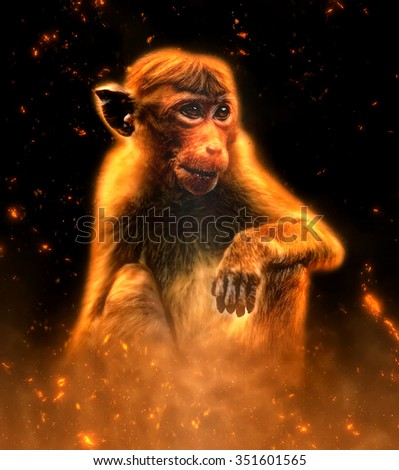 Monkey portrait in fire on dark background - stock photo