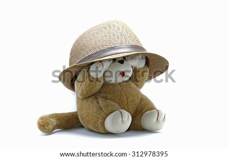 Monkey toy with hat on white background