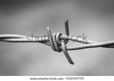 Monochrome black and white sharp spikes of a barbed wire fence.