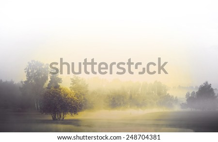Monochrome landscape with fog and sunshine, silhouette of woman in foreground - stock photo