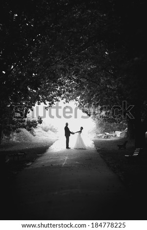 Monochrome photo of newly married couple hugging in tree tunnel at park - stock photo