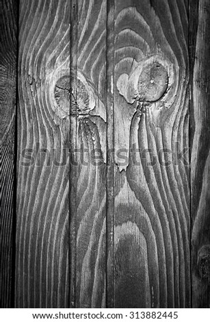 monochrome wooden surface looking like human face - stock photo