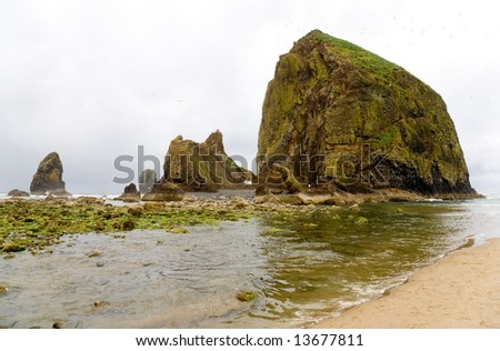 Monolith rocks on ocean beach bird sanctuary - stock photo