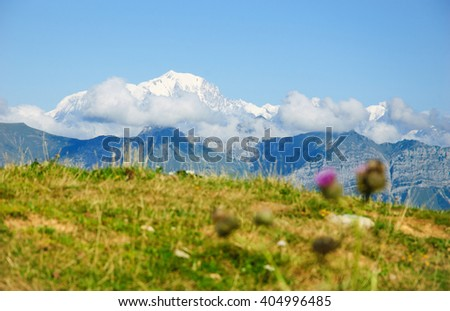 Mont Blanc Mountain covered with snow in summer. View from Cret de Chatillon (France). Selective focus on mountains. Blurred Thistle flower at foreground. - stock photo