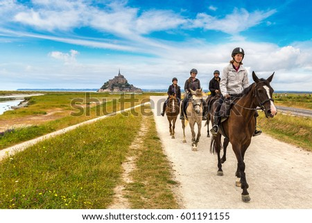 group of horses stock images royaltyfree images