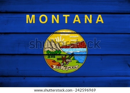 Montana State Flag on wood background - stock photo