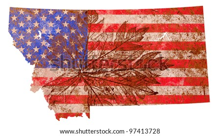 Montana state of the United States of America in grunge flag pattern isolated on white background - stock photo