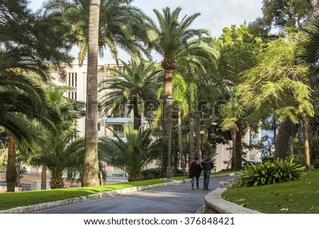 MONTE-CARLO, MONACO, on JANUARY 10, 2016. Exotic gardens, picturesque view of the avenue.