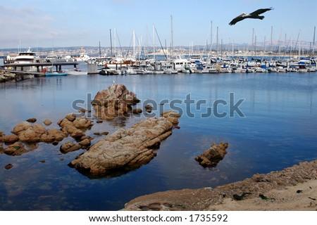 Monterey Bay, California - stock photo