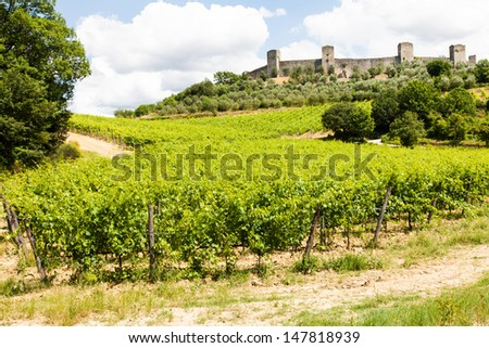 Monteriggioni, Tuscany region, Italy. Wineyard in front of the ancient medieval walls