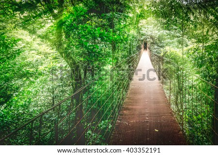 Monteverde Cloud Forest, Hanging bridge, Canopy Tour. Costa Rica - stock photo