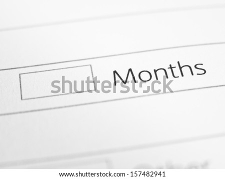 MONTHS printed on a form close up