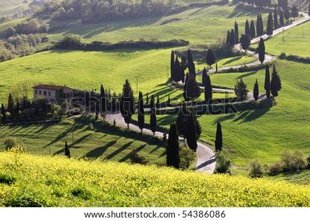 Monticchiello - Strada Della Foce (Tuscany) - stock photo