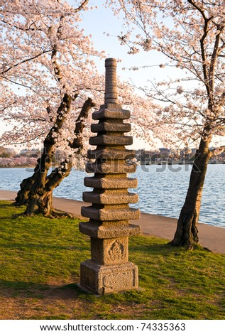 Monument by Tidal Basin and surrounded by pink Japanese Cherry blossoms - stock photo