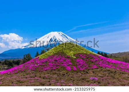 Monument of moss phlox flowers Mt. Fuji and Mount Fuji - stock photo