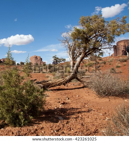 monument valley, USA, Arizona, Utah, western, wild west, native american,