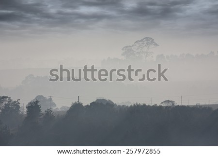 moody country landscape showing layers of grey mist receding into distant clouds hills and tree line - stock photo