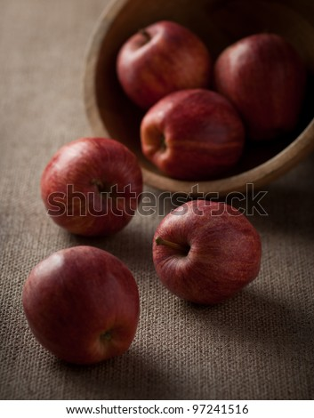 Moody Gala Apples