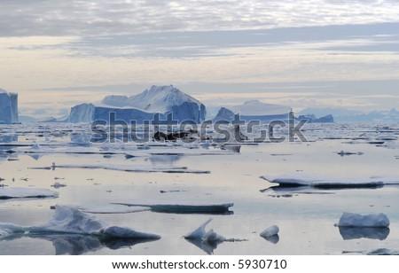 Moody Iceberg Bay - Northeast Greenland National Park - stock photo