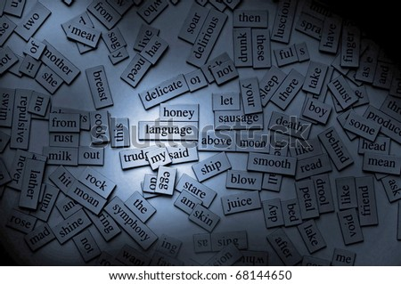 Moody lighting on magnetic word tiles, with the focus on the word 'language' - stock photo