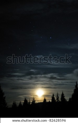Moon cloudy shining above the dark forest - stock photo