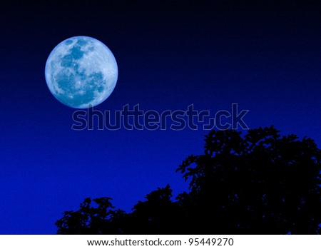 moon in the dark night - stock photo