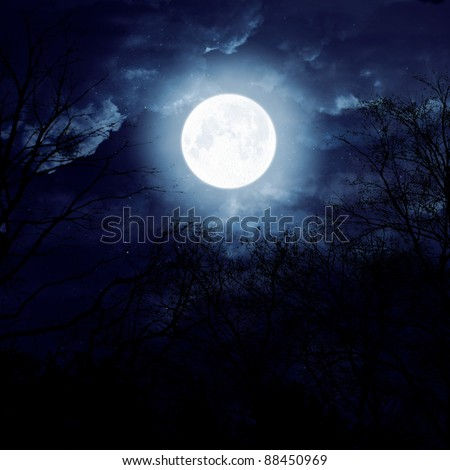 moon on a dark sky with clouds in the trees - stock photo